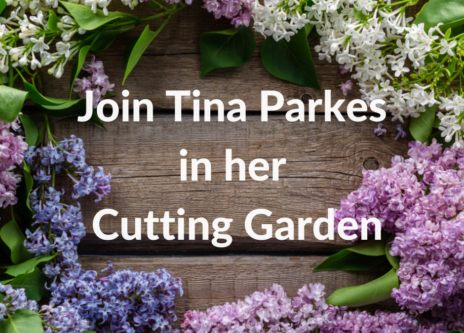 Friday Floral Focus- Tina's Cutting Garden 29.5.2020